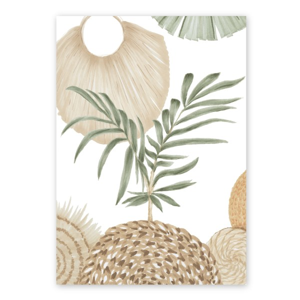 Calamus Palm III