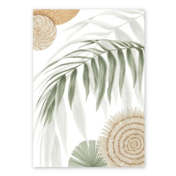 Calamus Palm I