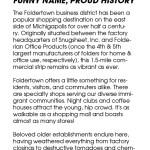 Foldertown Shopper's Guide, page 2