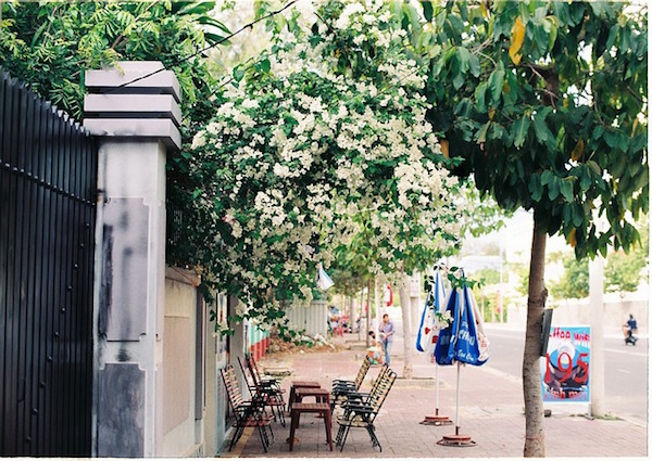 street-life-988193_640