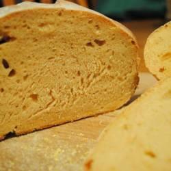 Sourdough Tomato Amish Friendship Bread