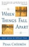 When_Things_Fall_Apart-2