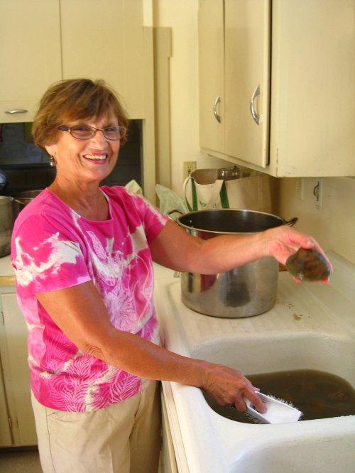Washing of the quahogs.