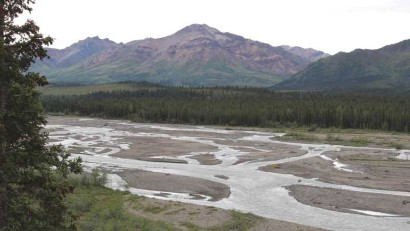A braided river at the base of the Alaska Range, Denali National Park and Preserve.