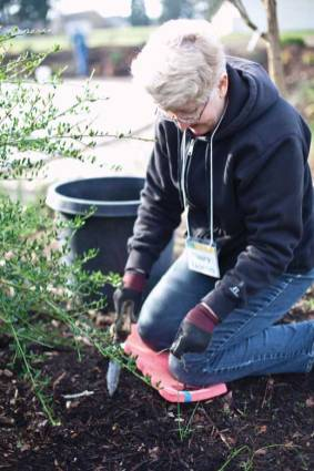 A member of North Valley Friends working on plantings.