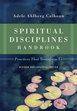 spiritual-disciplines-handbook-practices-that-transform-us