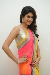 Shraddha Das Latest Photos in Colorful Saree