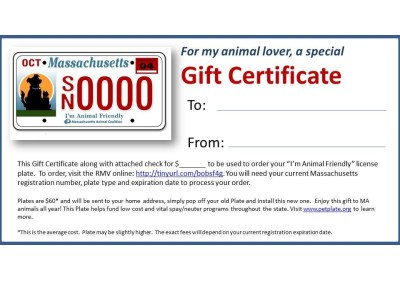 License Plate Gift Certificate
