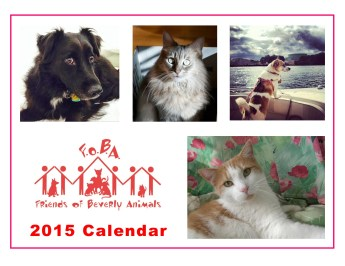 2015 FOBA Calendar