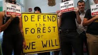 Forest Defenders Demand US Forest Service Protect Public Lands and Oppose Mountain Valley Pipeline