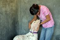 The shelter vet shares a loving moment with a resident dog.
