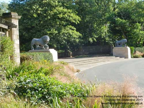 New lions on Stanley Park
