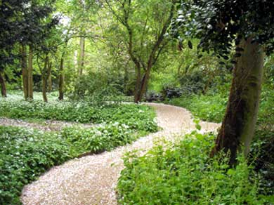 photo of Salisbury Woodland
