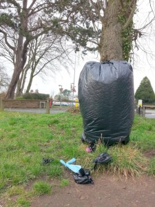 Covered dog waste bin, March 2015