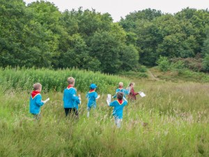 Beaver Scouts Explore Knutsford Heath