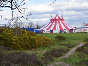 Gandeys Circus on The Heath