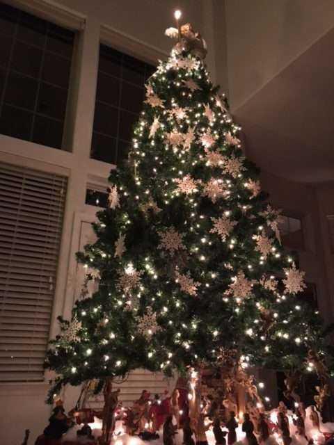 DEY MANSION ~ A DUTCH CHRISTMAS