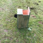 October 2016 - Installation of Bat and Bird boxes in Tividale Park