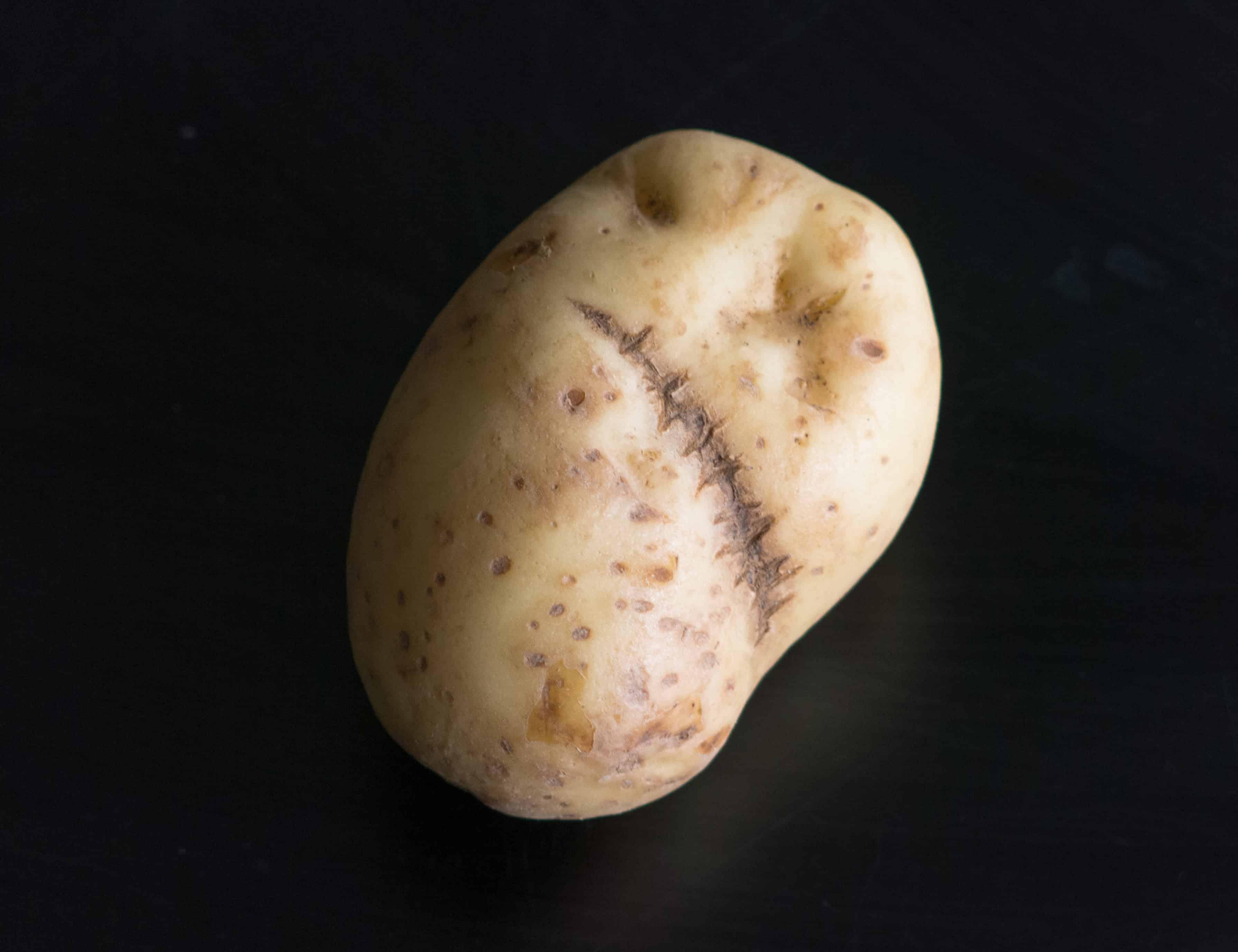 Frankenstein's Potato. A very special, scary, Halloween potato.