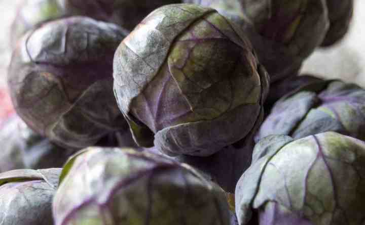 Brussels's Sprouts - January Seasonal Produce
