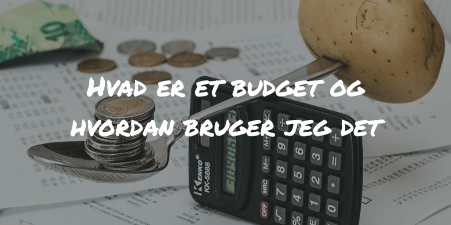Hvad er et budget og hvordan bruger jeg det Frinans