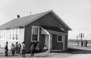 The Hamilton School 1955