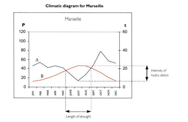 Marseille climate diagram, from Olivier Filippi, The Dry Gardening Handbook