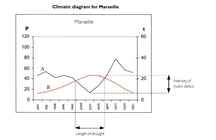 Marseille climate diagram, from Olivier Filippi, The Dry Gardening Handbook