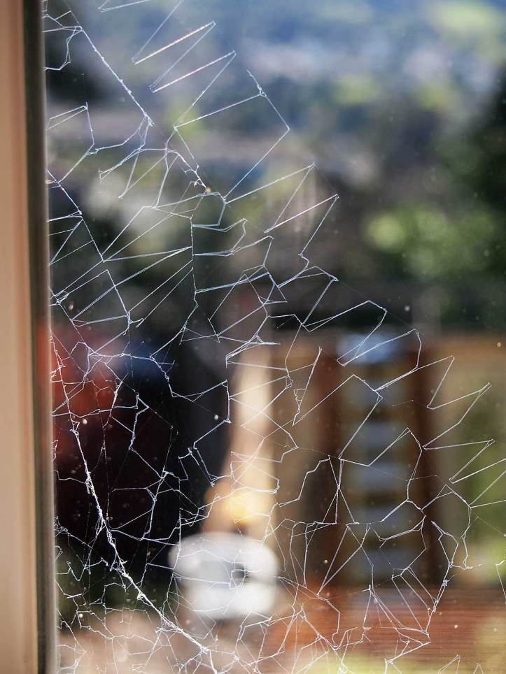 Flipped-out spider web.