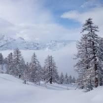 Repost @nemofsk Snorkling around with @blanc_steve #frisek #pow #snowboard