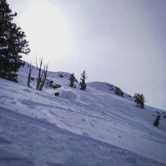 Our man @valax.simon and @sanduc charching Jerries in Kirkwood Tahoe in California ! #frisek #snowboard #usa #california #tahoe