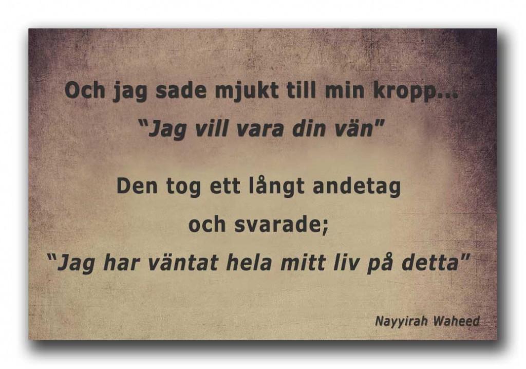 dalaI_jag_vill_vara_friend1