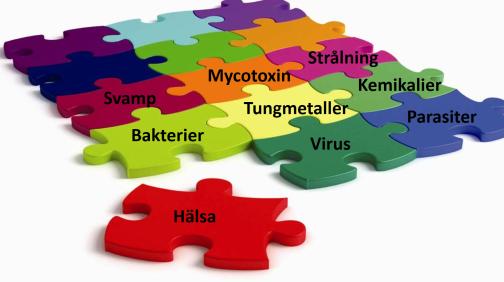 Information om virus, bakterier, parasiter, svamp, toxiska metaller och kemikalier