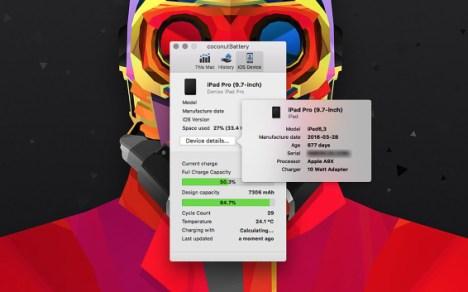 Informationen zur Version des iPad Pro.