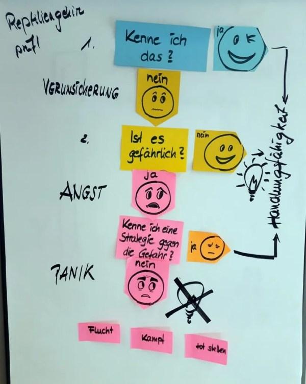 FRITZ - Change Leadership -Reptiliengehirn