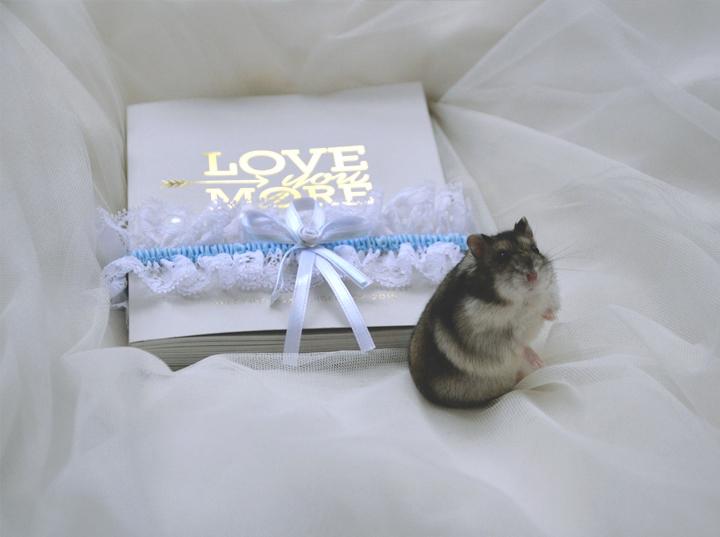 weddingbox4