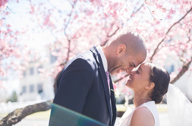 Bride and Groom with heads together under a cherry blossom tree.