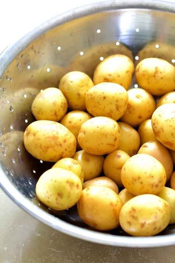 Stainless steel colander full of Yukon Gold potatoes before being hasselbacked