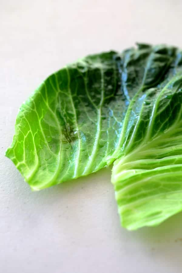 Spicy Asian Pork Cabbage Rolls - Photo of cooked cabbage leaf with V-Shape cut out of the bottom