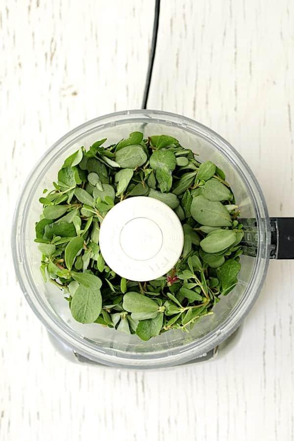 Purslane Chimichurri - Overhead shot of fresh purslane leaves in food processor