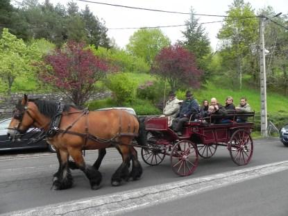 Transport en calleche pour St Nectaire en Majecté