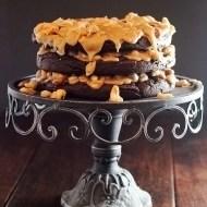 Salted Mixed Nut Praline Brownie Torte