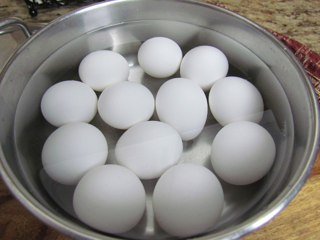 Eggs Water Salt
