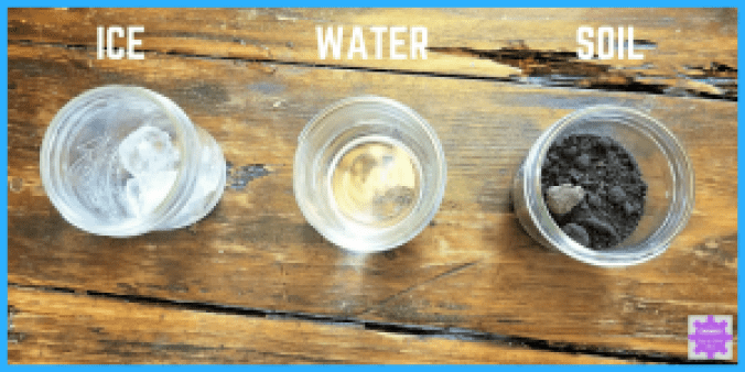 """Preschool Science Experiment inspired by Eric Carle's """"The Tiny Seed"""" 