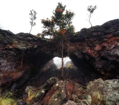 Land Arch