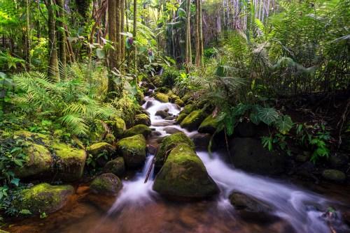 Boulder Creek Falls along the Alakahi stream within the Hawaii Tropical Botanical Garden