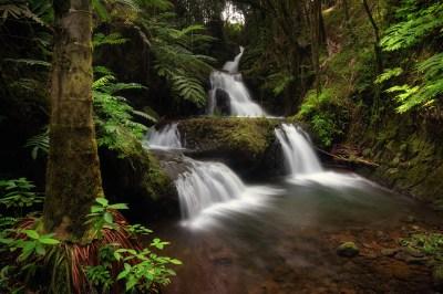 Onomea Waterfall