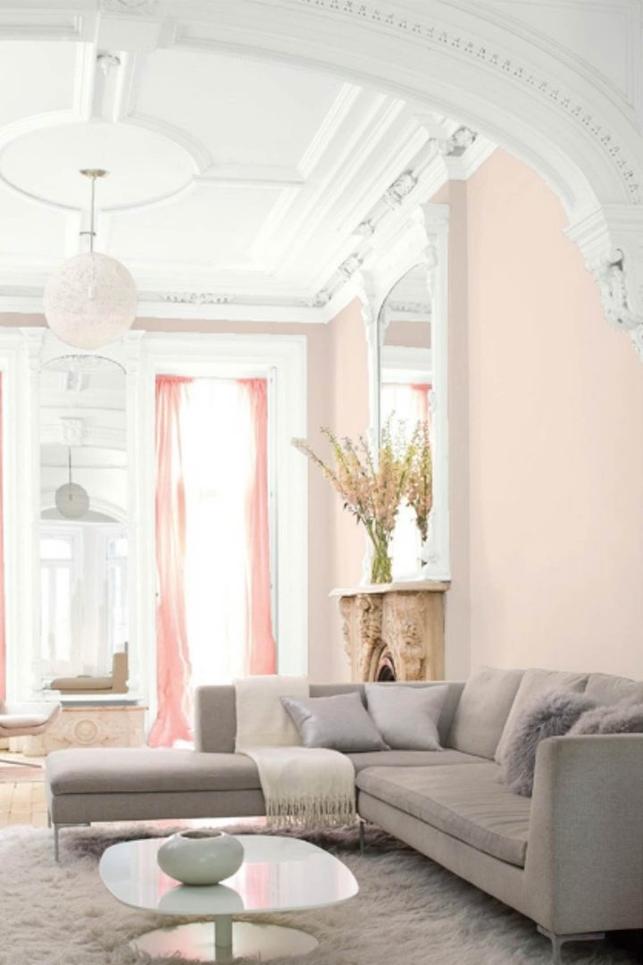 Pink Blush Colors Paint