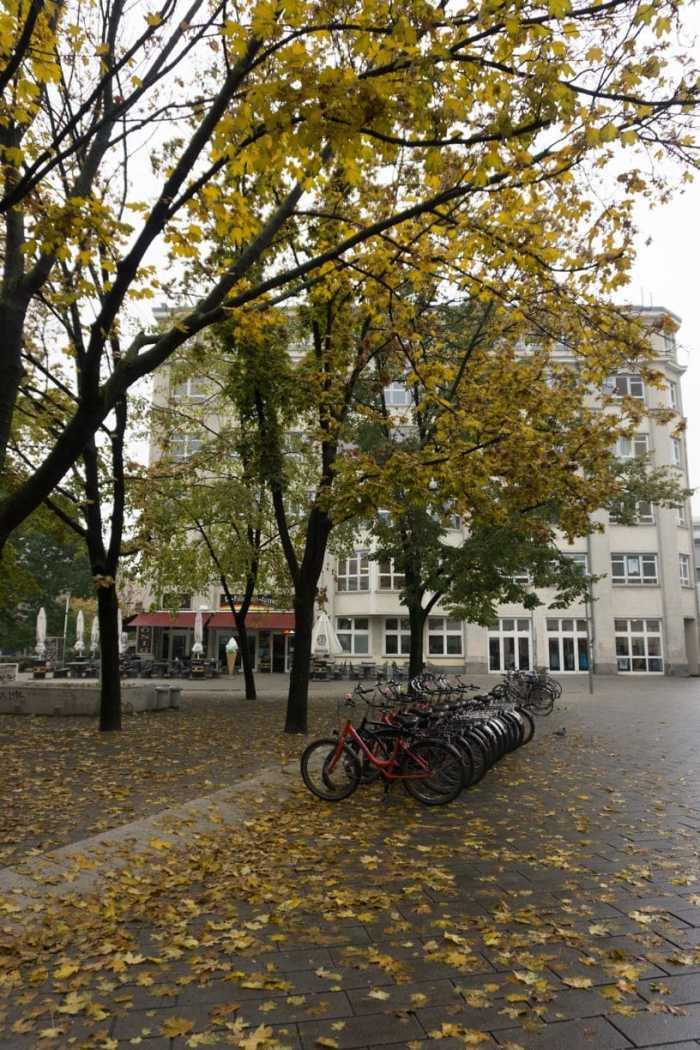 What Biking in Berlin Is Like for a Tourist