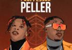 Seyi Vibez Professor Peller Lyrics ft. Zlatan